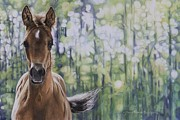 The Horse Pastels Prints - The Frilly Filly Print by Joni Beinborn