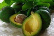 Hawaiian Food Photos - The Fujikawa Avocado by James Temple