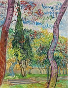 Red Leaves Painting Posters - The Garden of St Pauls Hospital Poster by Vincent van Gogh