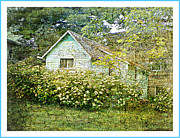 Dianne  Lacourciere - The Garden Shed