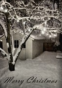 Snowy Night Digital Art - The Garden Sleeps by Michelle Calkins