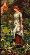 Lettuce Digital Art Framed Prints - The Gardeners Daughter Framed Print by Arthur Hughes