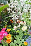 Flower Display Prints - The Gardens Print by Kathleen Struckle