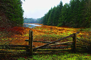 Vancouver Photo Originals - The Gate by Lawrence Christopher