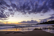 Sunset Seascape Prints - The Gathering Print by Sean Foster