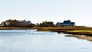 Michelle Wiarda - The Geese in Saquatucket Harbor