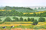 Farm Fields Painting Originals - The Genesee Valley by Dave Hasler