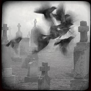 Gothicolors Donna Snyder - The Ghost Birds