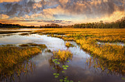The Glades At Sunset Print by Debra and Dave Vanderlaan