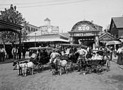 Pleasure Photo Prints - The Goat Carriages Coney Island 1900 Print by Stefan Kuhn