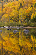 Quebec Art - The Golden Mirror by Mircea Costina Photography