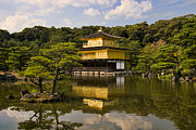 Pond.   Posters - The Golden Pagoda in Kyoto Japan Poster by David Smith