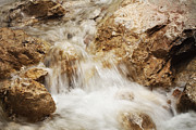 HJBH Photography - The golden stream