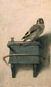 Signed Metal Prints - The Goldfinch Metal Print by Carel Fabritius