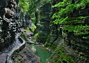Watkins Glen State Park Prints - The Gorge Trail Print by Lori Deiter