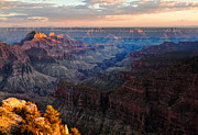 Vista Photo Posters - The Grand Canyon Poster by Alexis Birkill