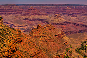 Trails Prints - The Grand Canyon IV Print by David Patterson