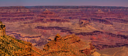 Trails Prints - The Grand Canyon V Print by David Patterson