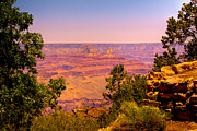 Trails Prints - The Grand Canyon VI Print by David Patterson