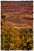 Trails Prints - The Grand Canyon Vintage Americana II Print by David Patterson