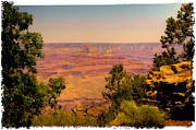 North Rim Framed Prints - The Grand Canyon Vintage Americana IV Framed Print by David Patterson