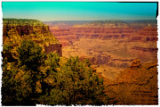 Counties Framed Prints - The Grand Canyon Vintage Americana VII Framed Print by David Patterson
