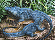 Duo Painting Posters - The Grand Cayman Blue Iguana Poster by Cara Bevan