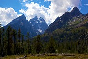 Terry Horstman Framed Prints - The grand Tetons  Framed Print by Terry Horstman