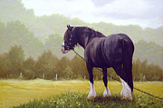 Equestrian Prints Prints - The grass is greener  Print by John Silver
