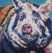 Pig Framed Prints - The Great Barrington Framed Print by Patricia A Griffin