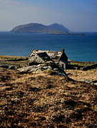Florian Walsh Metal Prints - The Great Blasket Metal Print by Florian Walsh