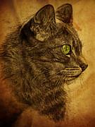 Pamela Phelps - The Great Cat