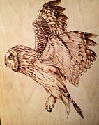 Owl Pyrography Metal Prints - The Great Flight Metal Print by Adin Begic