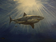 Shark Paintings - The Great White King of the Seas by Alexandros Tsourakis
