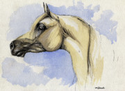Stallion Drawings - The grey arabian horse 12 by Angel  Tarantella