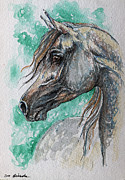 Horse Drawing Originals - The Grey Arabian Horse 13 by Angel  Tarantella