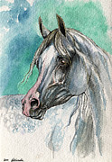 Horse Drawings Originals - The Grey Arabian Horse 3 by Angel  Tarantella