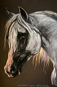 Grey Pastels Prints - The Grey Arabian Horse Print by Angel  Tarantella