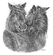 Groom Drawings Framed Prints - The Groom - Chincoteague Pony Print Framed Print by Kelli Swan