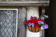 Timber House Prints - The Hanging Basket 2 Print by James Brunker