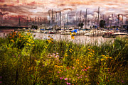Piers Framed Prints - The Harbor Framed Print by Debra and Dave Vanderlaan