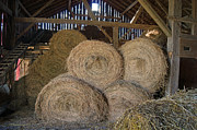 Steph Maxson - The Hay Barn