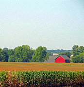 Indiana Farms Framed Prints - The Heartland in Late Summer Two Framed Print by Tina M Wenger