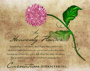 Bible Mixed Media Prints - The Heavenly Flower Print by Brenda Bryant