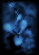 Sherry Hallemeier Posters - The Hidden Lilly  Poster by Sherry Hallemeier