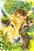 Rack Drawings Prints - The Highland Bull Print by Carol Wisniewski