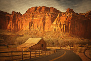 Capitol Reef National Posters - The Historical Gifford Barn at Capitol Reef National Park Poster by Carolyn Rauh