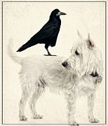 Crow Art Prints - The Hitchhiker Print by Edward Fielding