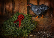 The Holiday Hen Print by Robin-Lee Vieira