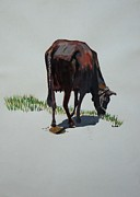 Holy Cow Paintings - The Holy Cow and dung. by Usha Shantharam
